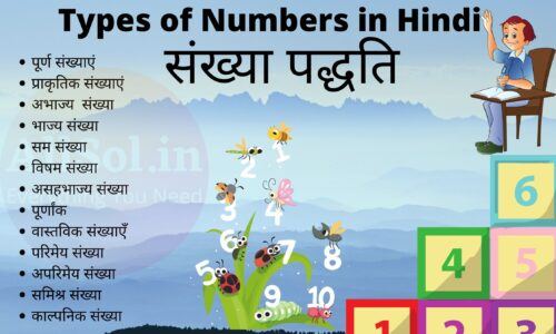 Types of Numbers in Hindi