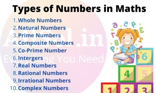 Types of Numbers in Maths