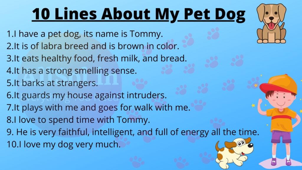 10 Sentences About My Pet Dog