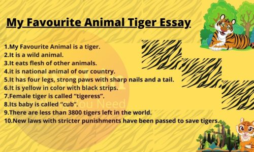 My Favourite Animal Tiger Essay