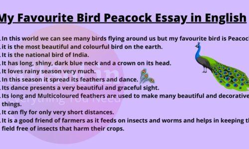 My Favourite Bird Peacock Essay in English